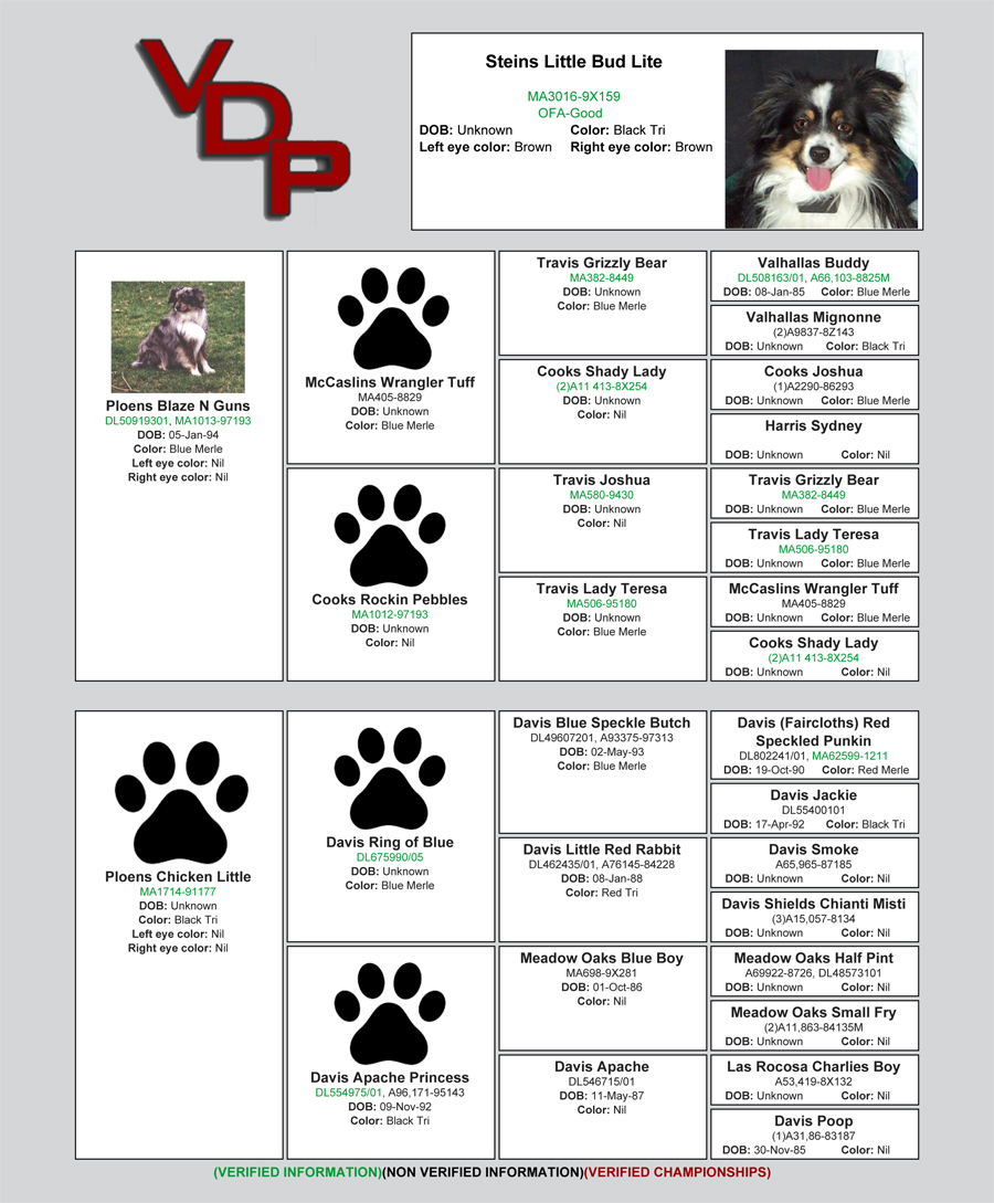 A sample of a Verified Dog Pedigrees peidgree